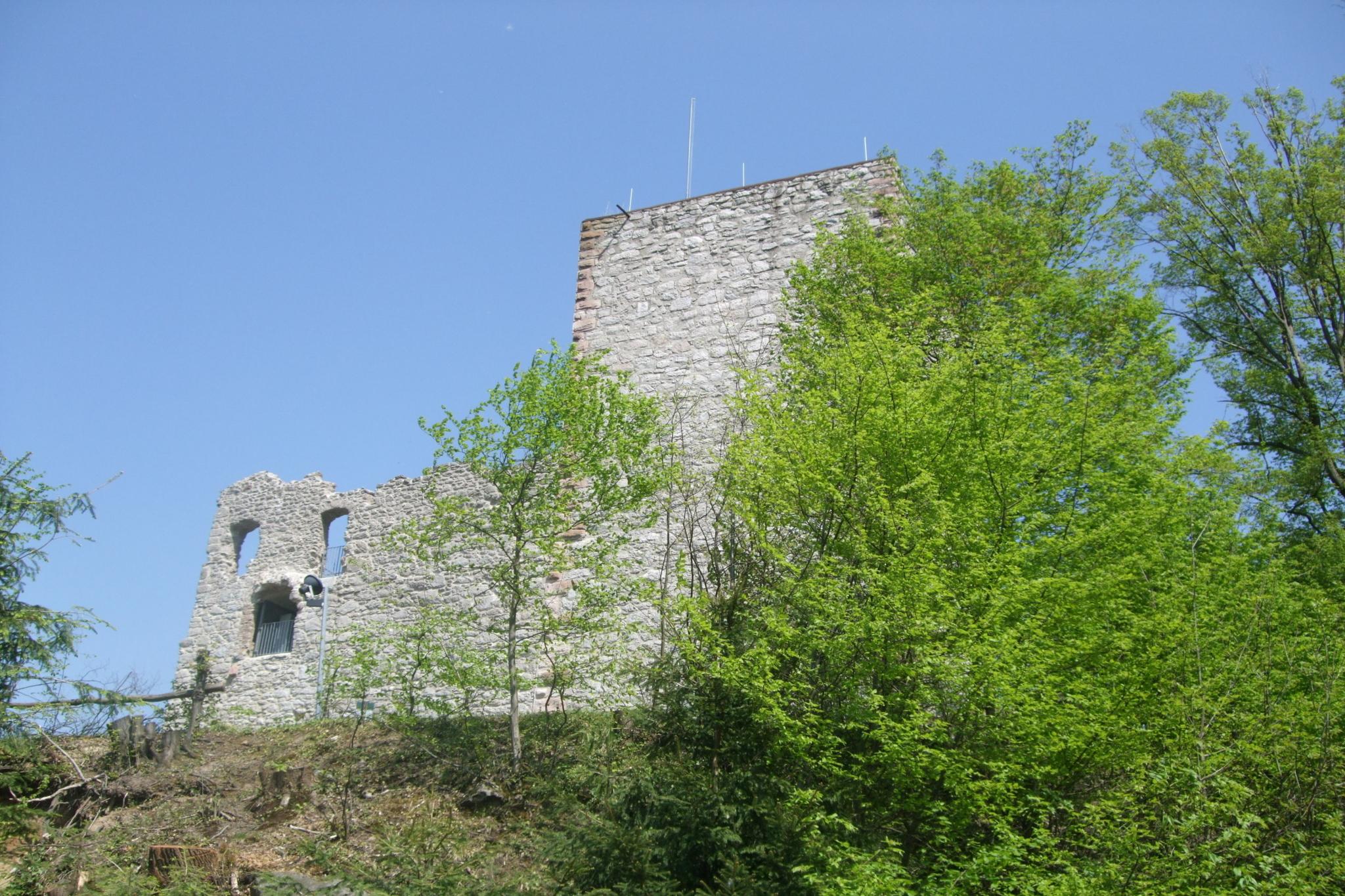 Ansicht Burgruine Neuwindeck
